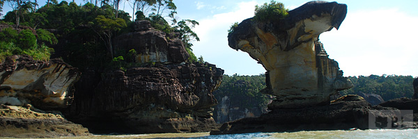 Bako National Park Best Tourist Attractions And Places To Visit In Malaysia 2014